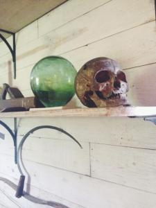 A human skull rests on one of the shelves in the Prop Room of N.C's studio.